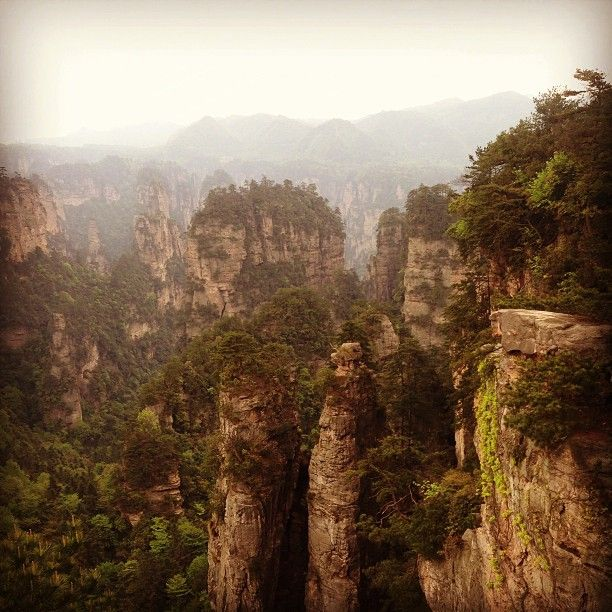 张家界国家森林公园 • Zhangjiajie National Park in 永定, 湖南