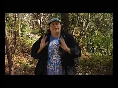 How the Kangaroo got Her Pouch - Aboriginal Dreamtime Story