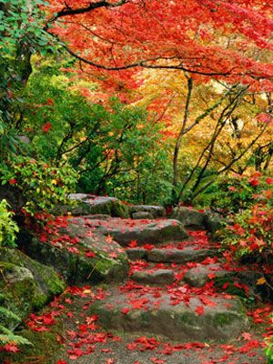 9 Fabulous Fall Landscapes That Will Make You Smile! | via @Woman's Day #autumn #nature #SmileStarters