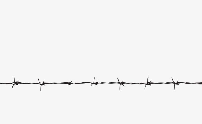 Straight Barbed Wire Barbed Wire Tattoos Barbs Barbed Wire