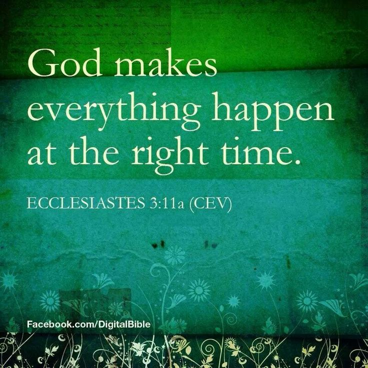 "Ecclesiastes 3:11A - ""He has made everything beautiful in its time."""