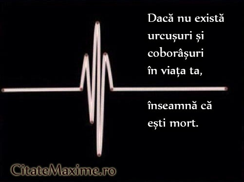 """Daca nu exista urcusuri si coborasuri in viata ta, inseamna ca esti mort""  Iti place acest #citat? ♥Like♥ si ♥Share♥ cu prietenii tai.  #CitateImagini: #Viata #Succes #Necazuri  #romania #quotes  Vezi mai multe #citate pe http://citatemaxime.ro/"