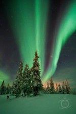 Aurora Inn | Dawson City, Yukon, Accommodation, Hotel, Klondike, Aurora Borealis