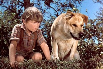 Old Yeller (1957) starring Tommy Kirk, Dorothy McGuire, Fess Parker, and Kevin Corcoran. Directed by Robert Stevenson