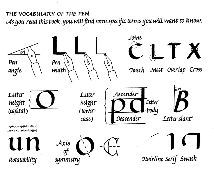 From my book Learn Calligraphy, a short list of terms.