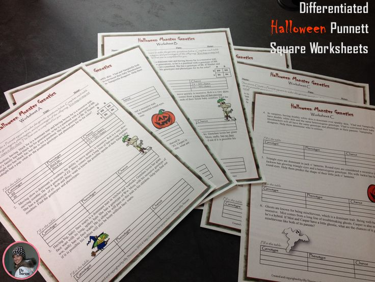 Genotype And Phenotype Punnett Square Worksheets With