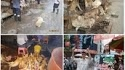 PLEASE PLEASE SIGN THIS PETITION> Please STOP dog festival June 2014  take a moment to sign this important petition to the Mayor of Yulin, China asking that the Yulin Dog Meat Festival be stopped…  http://www.change.org