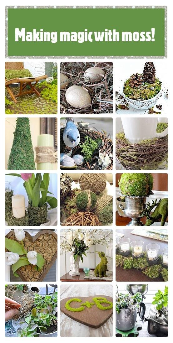 Pinterest Garden Craft Ideas Part - 41: Moss Magic Idea Box By FunkyJunk Interiors - Donna. Diy CraftsGarden ...