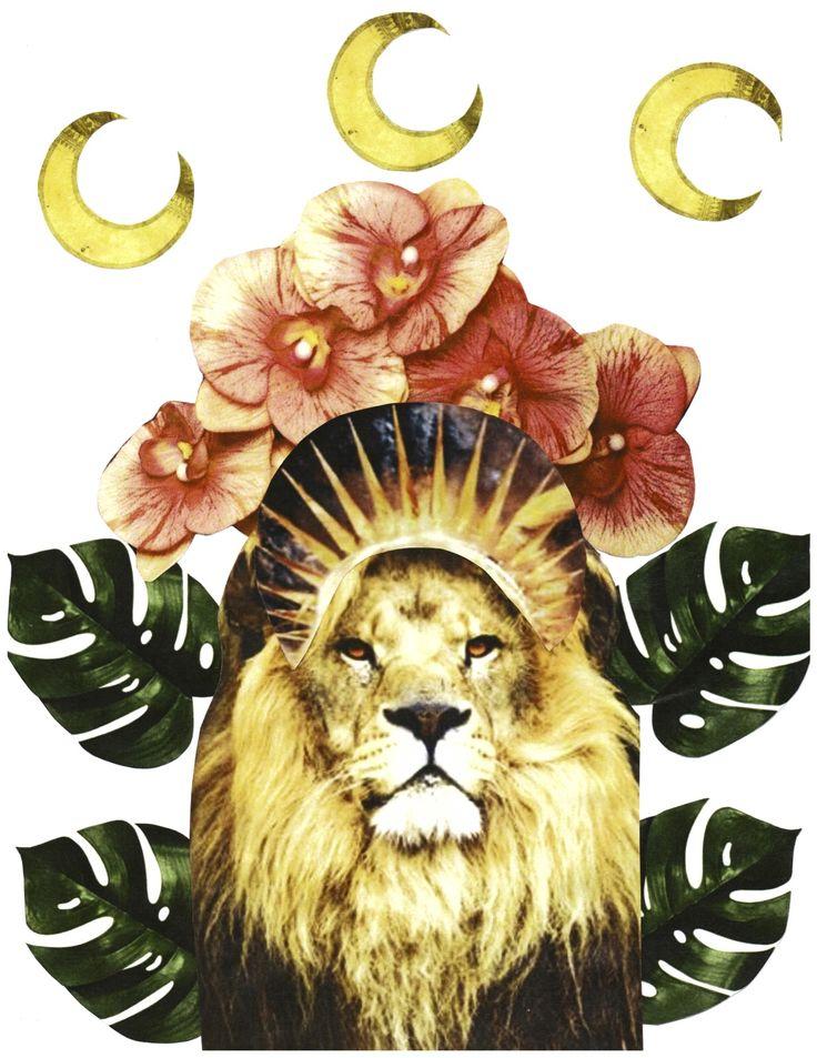 Chani Nicholas – Shine Forth: The New Moon in Leo
