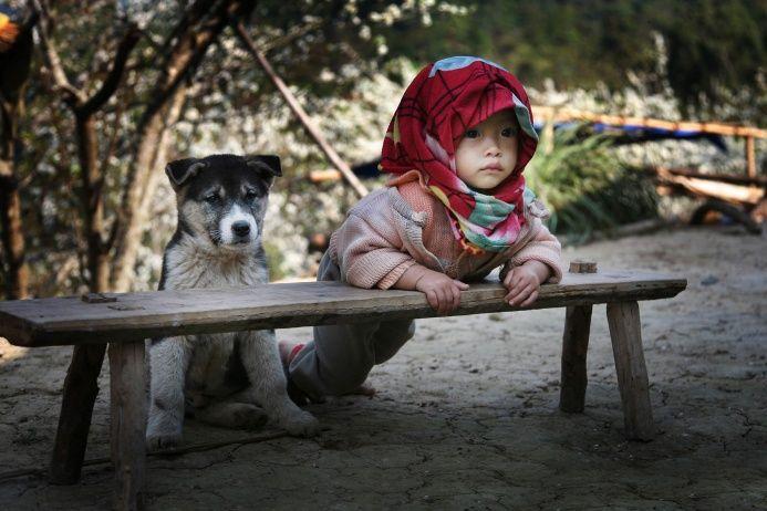 Терпеливо ждущих щенка и ребенка запечатлел вьетнамский фотограф Фам Суан Хиен
