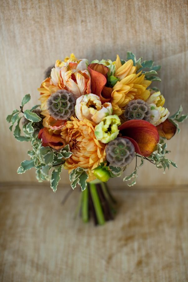 A bouquet with Scabiosa Pods makes for a visually interesting fall bouquet    image by becky hill