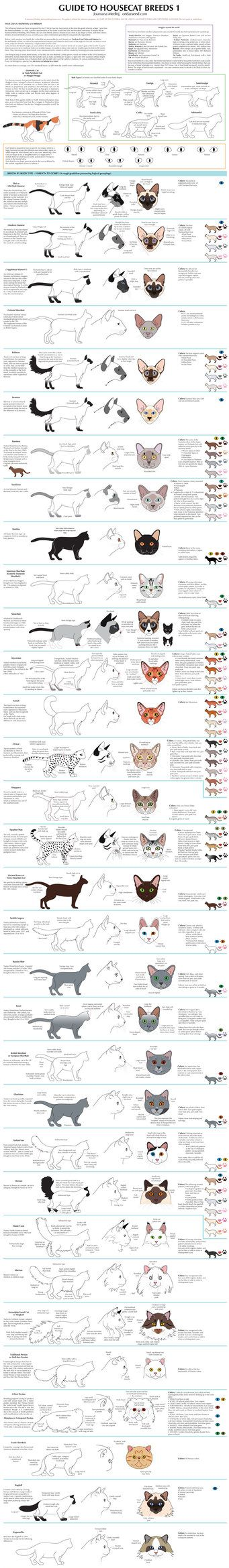All the cat breeds wouldn't fit on one document so I had to divide this one. The last 12 breeds, those with coat/tail/ear mutations, are in part 2 linked below. To view both parts of this chart tog...
