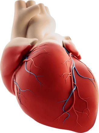 Гипертония уходит мгновенно! Поразительное открытие в лечении гипертонии