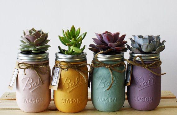 Pastel Collection of Four Hand Painted Succulent Jars(Pink, orange, blue, purple) on Etsy, € 35,21
