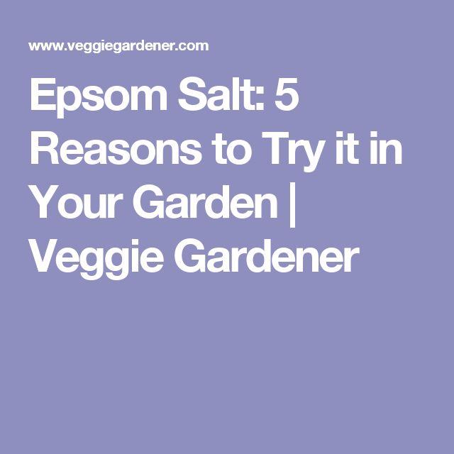 Epsom Salt: 5 Reasons to Try it in Your Garden | Veggie Gardener
