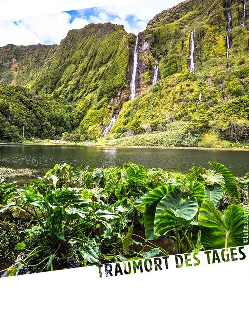 Flores, Azoren. Die sogenannte Blumeninsel ist die viertkleinste Insel der Azoren und überzeugt mit einer einzigartigen Vielfalt an Blumen, weswegen die UNESCO die Ilha das Flores seit 2009 als Biosphärereservat gelistet hat.