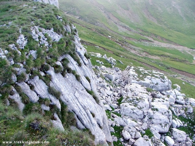 Doamnele Valley - #Bucegi_mountains