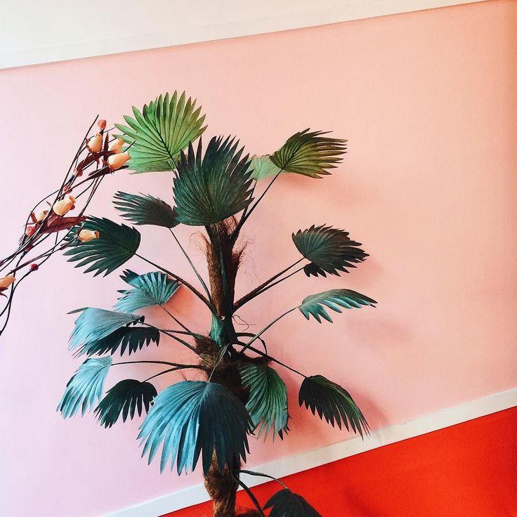 ozana . . . #palmier#ig_bucuresti#ig_bucharest#ozana#cartier#roz#lavieenrose#colorcombo#igersromania#AoV#outofthisworld#artphoto#obsevational#visualmood#vsco#exploretocreate#createcommune#MoodyGrams#cheadsmagazine#peoplescreatives#creativemag#agameoftones#deadpan#instaart#colors#latergram#plants#plantsofinstagram