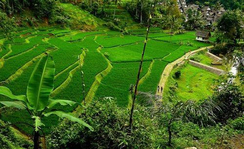 Objek Wisata di Tasikmalaya Yang Wajib Anda Kunjungi