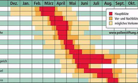 insektenflug kalender wann ist wer unterwegs m ckenschutz insektenschutz. Black Bedroom Furniture Sets. Home Design Ideas
