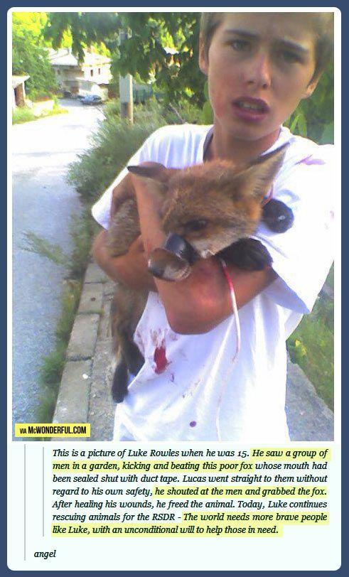 The kid who saved a fox!