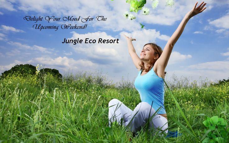Delight Your Mood for the upcoming Weekend!!!!!!!!!! #Jungleecoresort #Jungle #Wildlife #birdwatching #Resorts #junglefever #Junglelife