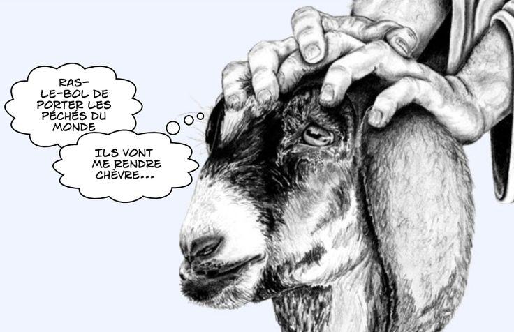 Le bouc émissaire porte tous les péchés du monde sur son dos, de quoi le rendre chèvre.