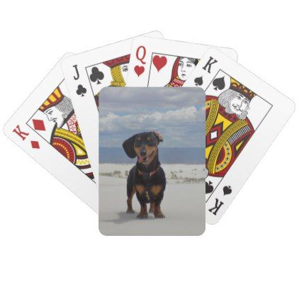White Sands Playing Cards - dog puppy dogs doggy pup hound love pet best friend
