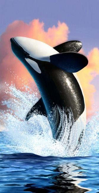 Orca  byJerry LoFaro - digital painting - 2008