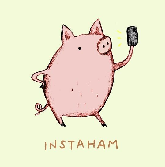 Best Trocadilhos Images On Pinterest Funny Things Words And - Amusing illustrations will put smile face