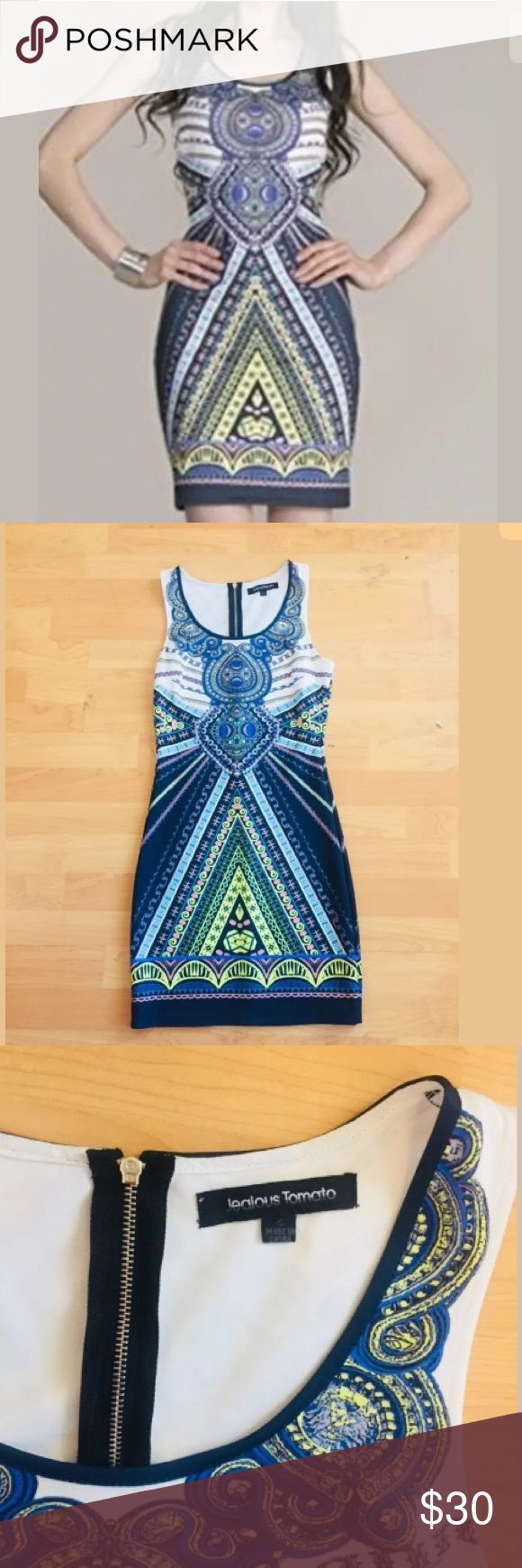"""Jealous Tomato Aztec Bodycon dress size S Jealous Tomato Aztec Bodycon dress  Size s  Bust 30""""  Length 35""""  Polyester/spandex  No rips or stains  In good condition jealous tomato Dresses"""