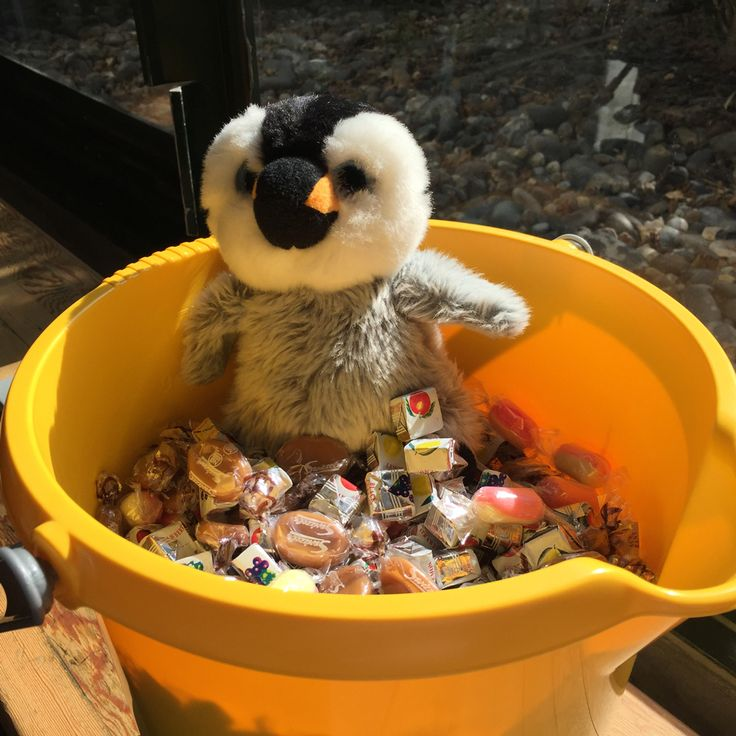 You're bathing in sweets, Pip?  They're for our clients!   And no, it doesn't make any difference if this is the lifestyle to which you would like to become accustomed!