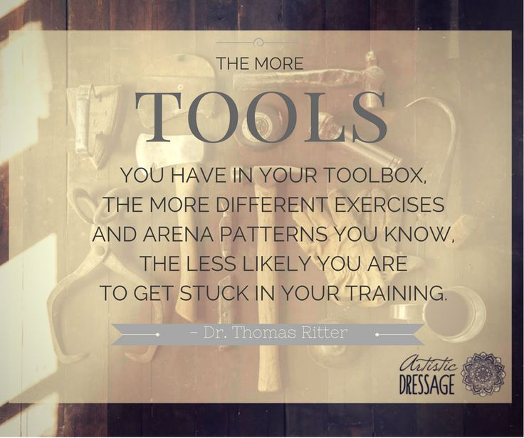 """The more tools you have in your toolbox, the more different exercises and arena patterns you know, the less likely you are to get stuck in your training."" - Thomas Ritter www.artisticdressage.com"