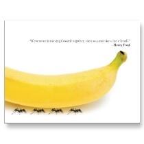 teamwork funny banana