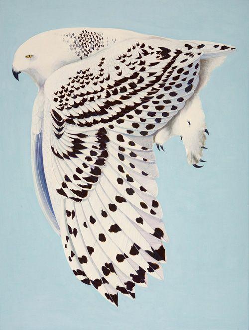 Stunning Artwork by Scott Kelley - Snowy Owl