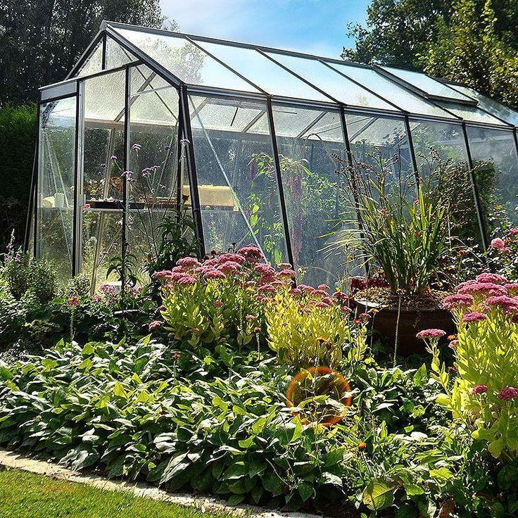 Du vet väl att vi även har andra modeller på växthus? Som det här tex. med snedställda glasskivor på båda långsidor för ett bättre och jämnare ljusinsläpp med gott om plats att odla.  Besök oss i Enhörna Södertälje om du vill ta en närmre titt! #wexthuset  #växthus #greenhouse #uterum #favoritplats #favouriteplace #mygarden #växtodling #minträdgård #odling #odla #odlaiväxthus #inomhusodling #fröer #drivhus #miniväxthus #allakanodla #hemodlat #lantliv #stadsodling
