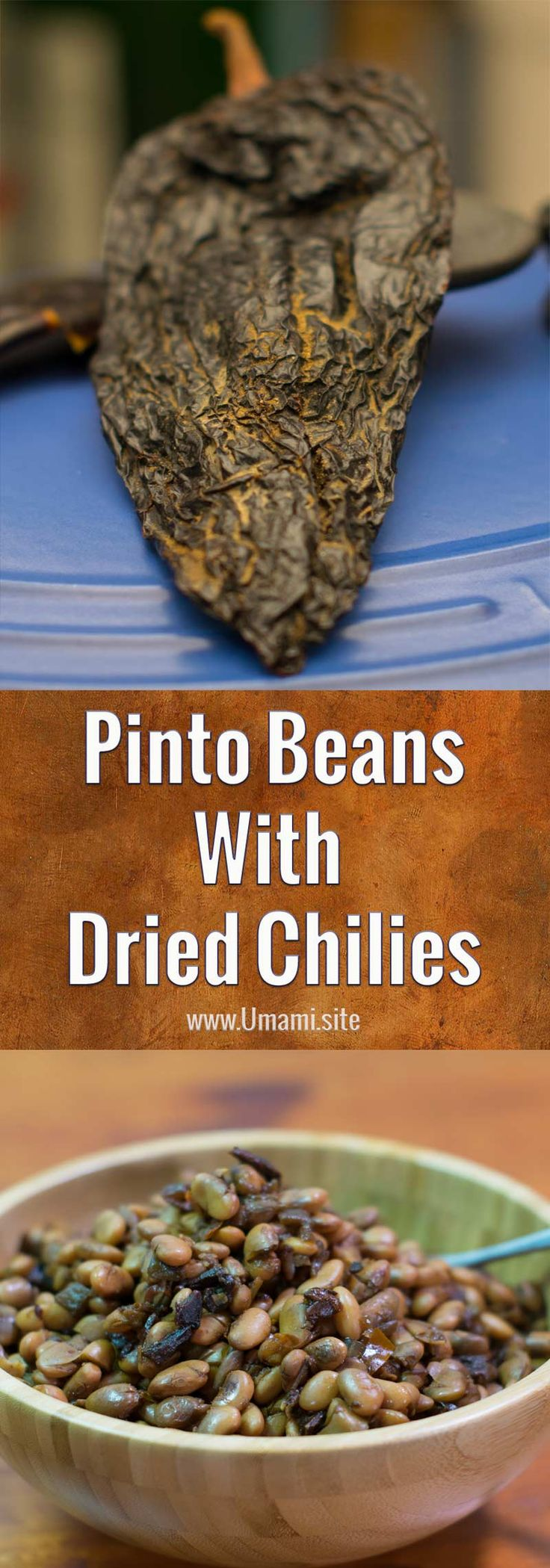 Pinto beans cooked with dried chilies have a deep, rich southwestern flavor. This pinto bean recipe uses ancho and pasilla chilies to create a healthy and delicious dish.