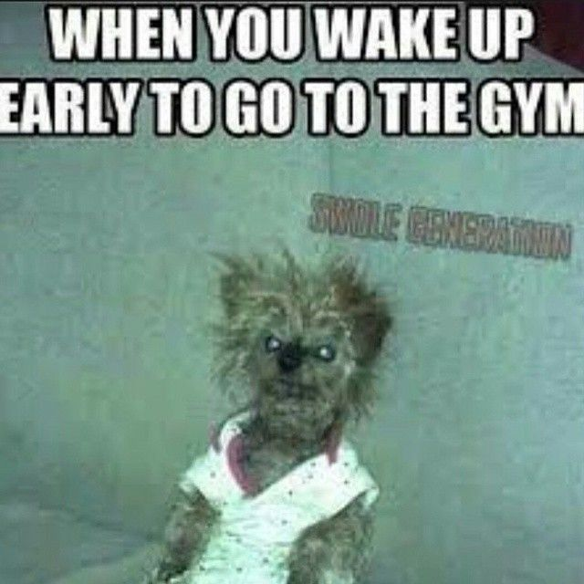 17 best ideas about Workout Memes on Pinterest | Funny ...