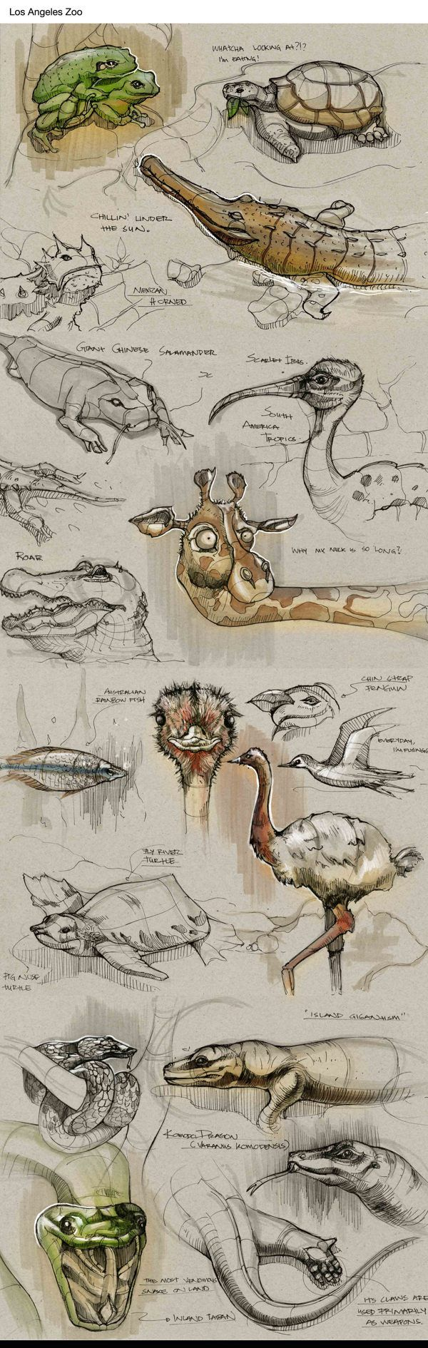 Sketches by Della Tosin
