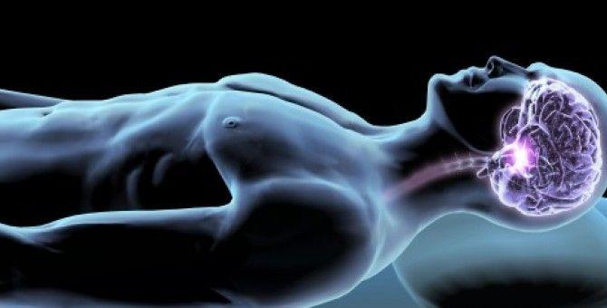 5 Great Jobs that Do Brain When You Sleeping