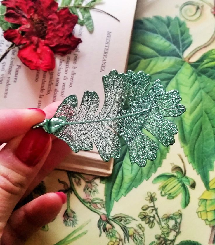 Real Plant Pendant Necklace, Green Oak Leaf,Woodland Terrarium,Boho, Gift from Nature, Gift under 50, Dainty by AGNESMISTRAL on Etsy