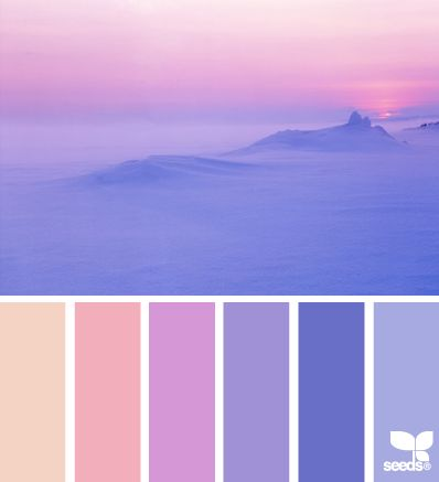 color set purple and peach colors