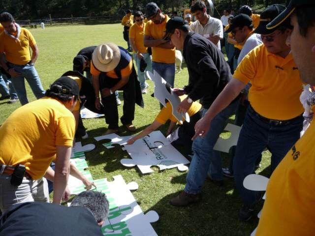 team building actividades en equipos al aire libre