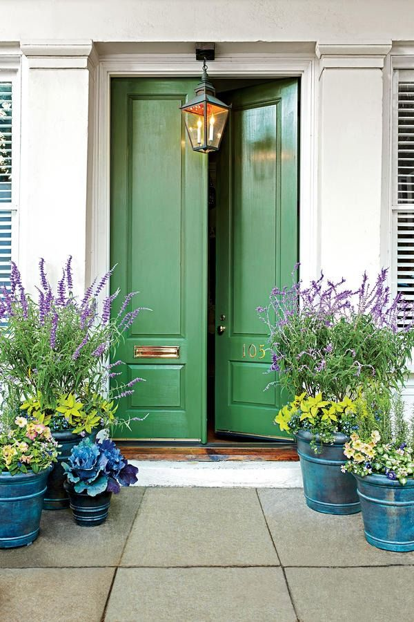 Best 25 front door plants ideas on pinterest front door Container plant ideas front door