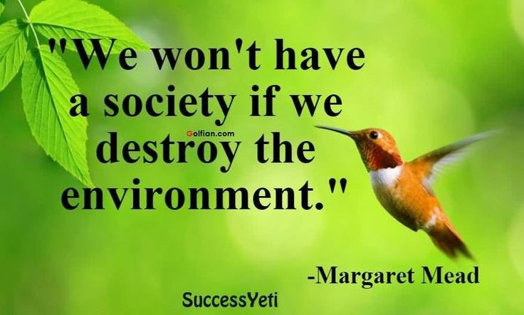 "We Won't have a Society If We Destroy the environment.""-Margaret ..."
