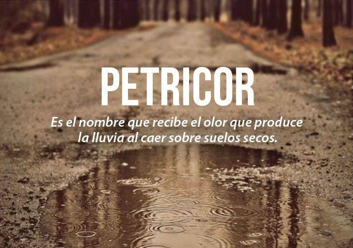 palabras bonitas http://culturainquieta.com/es/inspiring/item/8514-40-de-las-mas-bellas-palabras-del-castellano-estan-vuestras-favoritas/?utm_source=Facebook-20minutos&utm_medium=Social&utm_campaign=Postlink