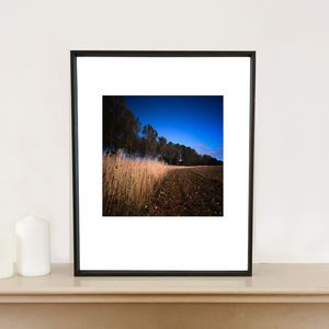 Curve, Walsham Le Willow, Signed Art Print