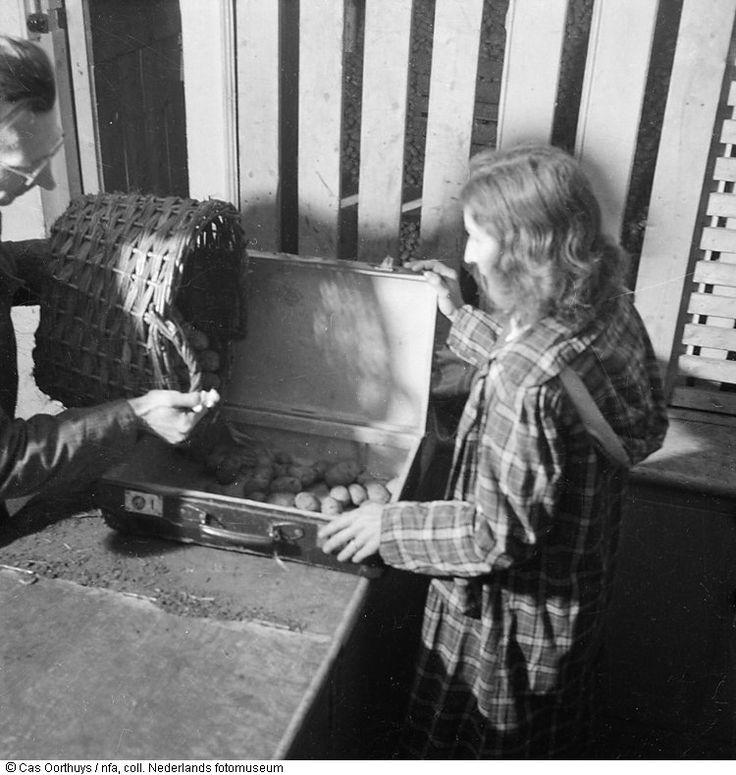 1944 - 1945. An employee of a food distribution center in Amsterdam drops an allotment of potatoes in a suit case of a citizen of Amsterdam during the hongerwinter. #amsterdam #worldwar2 #Hongerwinter