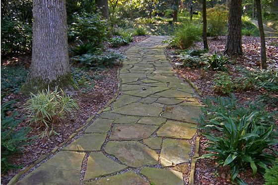 Flagstone Filler Plants : Best images about patios paths steps on pinterest