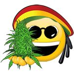 Legalize Cannabis Quotes | Weed Is Cool Funny Marijuana Leaf Pic | Weed Is Safer Memes | Marijuana Legalization Quotes Stop the misinformation on cannabis! Starting with Reefer Madness, there have been many misleading information about